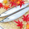 健康食人 vol.86 -青魚-
